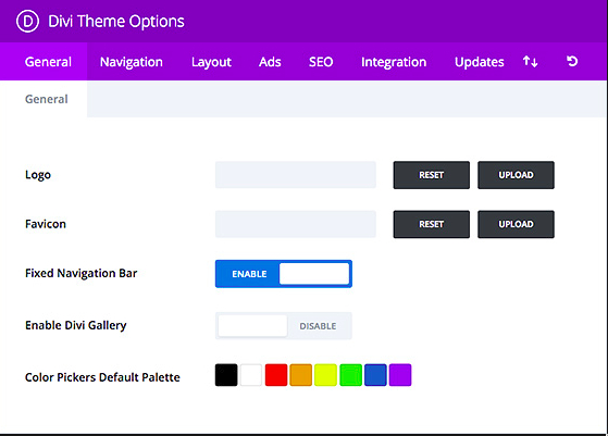 Divi WordPress theme options