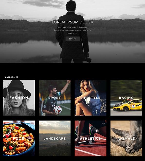 Elegant Themes Divi - photography theme for WordPress